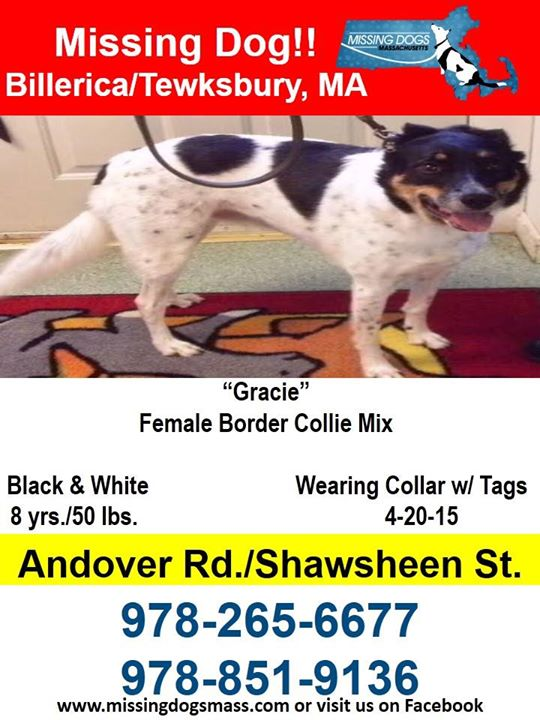 Gracie Missing Poster