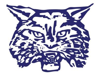 Wilmington Wildcat