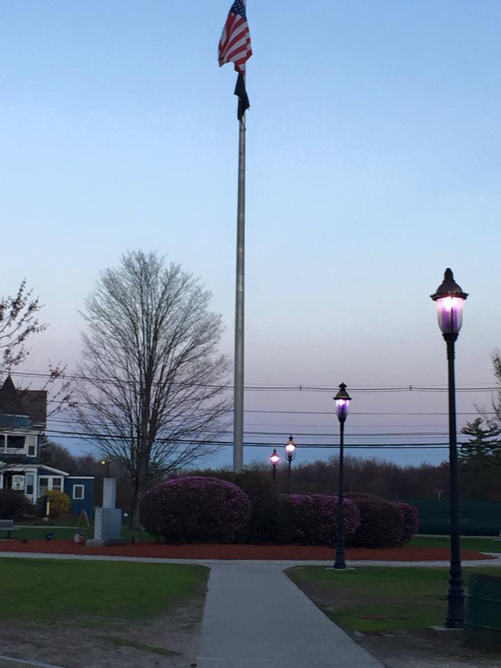 Purple lights on the Town Common in May (photo from Wilmington RFL's Facebook page)