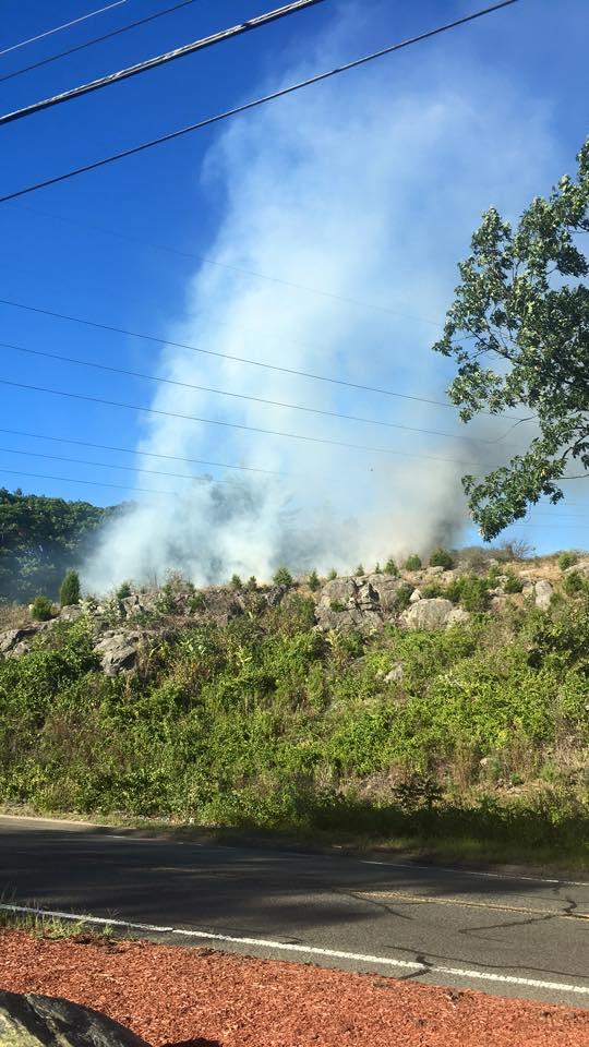 Brush Fire (WPD3)