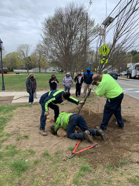 Allen Tree Planting day 4-15-21 -b